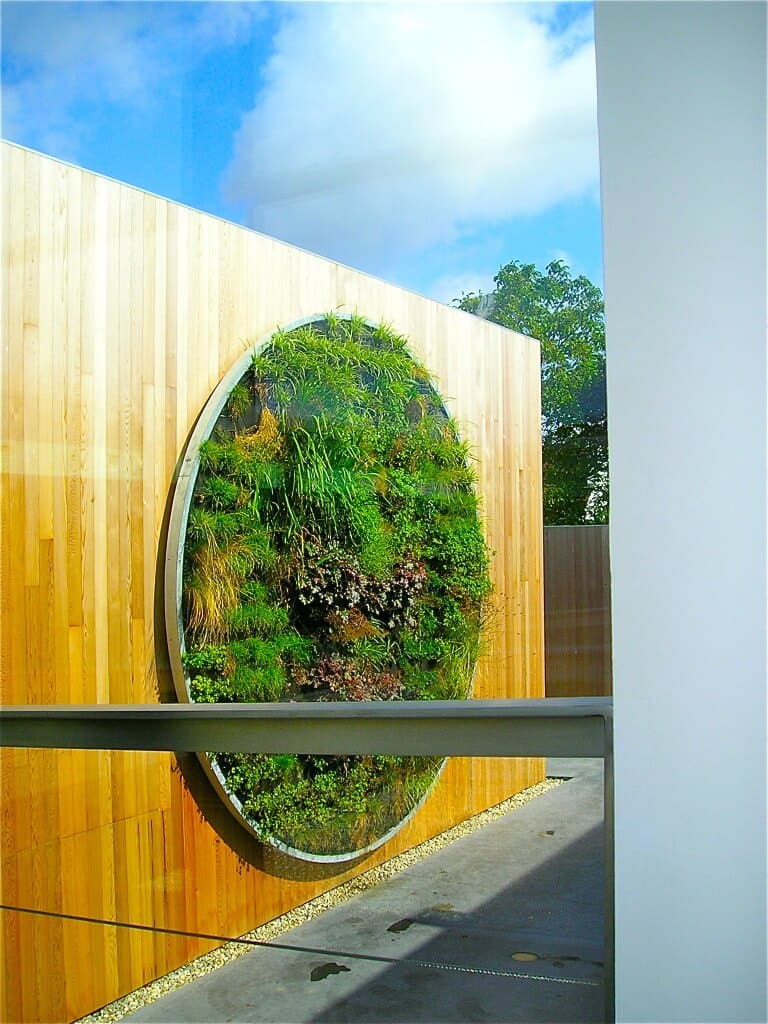 Verticale tuin hoe maak je deze zelf en wat is het onderhoud for Schilderij buiten intratuin