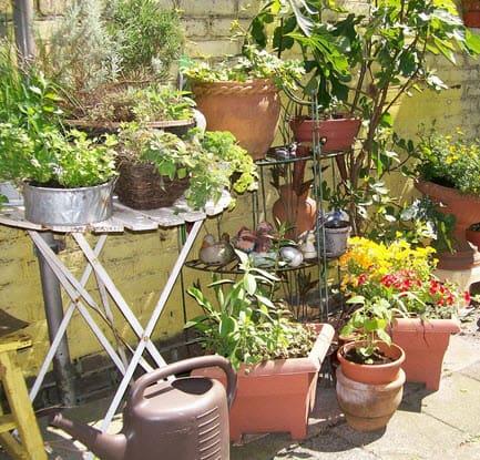 10 veel gemaakte fouten bij tuinontwerp en tuinaanleg tuin en balkon - Decoratie van een terras ...