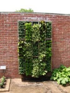 Verticale tuin hoe maak je deze zelf en wat is het onderhoud for Verticale tuin systeem