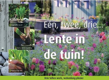 Snel kleur in huis met bol op pot tuin en balkon - Beurs geopend op de tuin ...