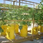 hydro emmers met meloenen