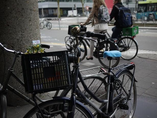 dutch-bicycle-garden-10