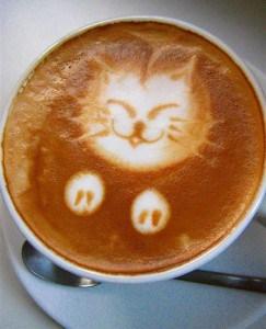 kat met koffie