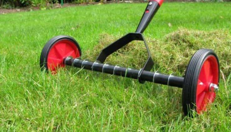 Gras In Tuin : Prachtig gazon tuintuin