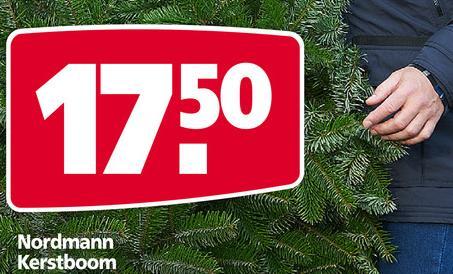 Goedkoopste Kerstboom Kopen In 2013 Tuin En Balkon