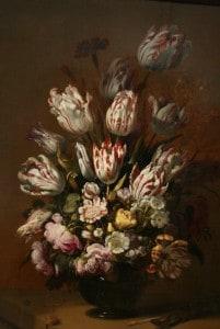 historische tulpen in het Rijksmuseum