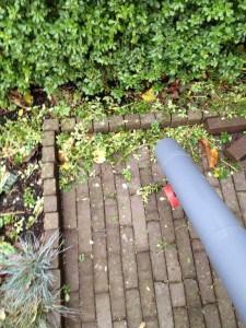 De bladblazer brengt het snoeiafval bij elkaar om het daarna op te zuigen.