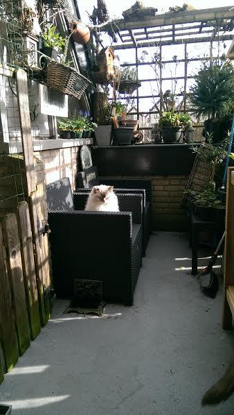 balkon-vogelhuisje