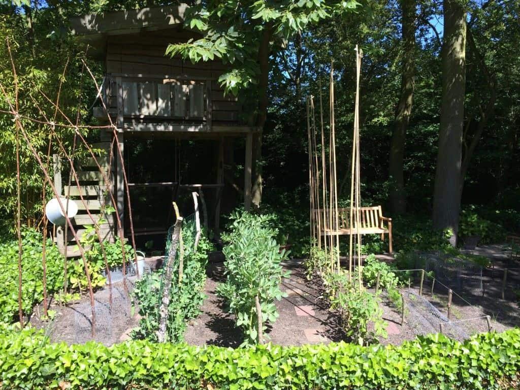 Plan je moestuin op afstand tuin en balkon - Hoe een heuvelachtige tuin te plannen ...